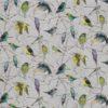 Aviary_F7011-01