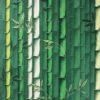 Bamboo_W7025-01